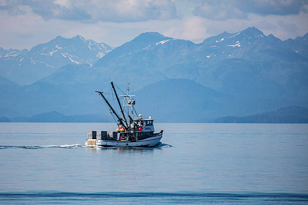fishing trawler - fishing boat stock pictures, royalty-free photos & images