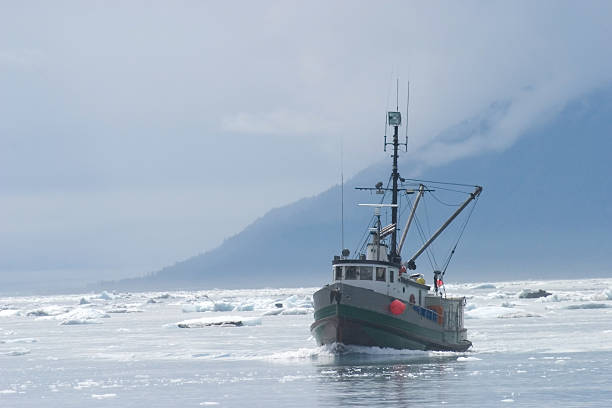 fishing trawlerr in northern ice filled water - fishing boat stock pictures, royalty-free photos & images
