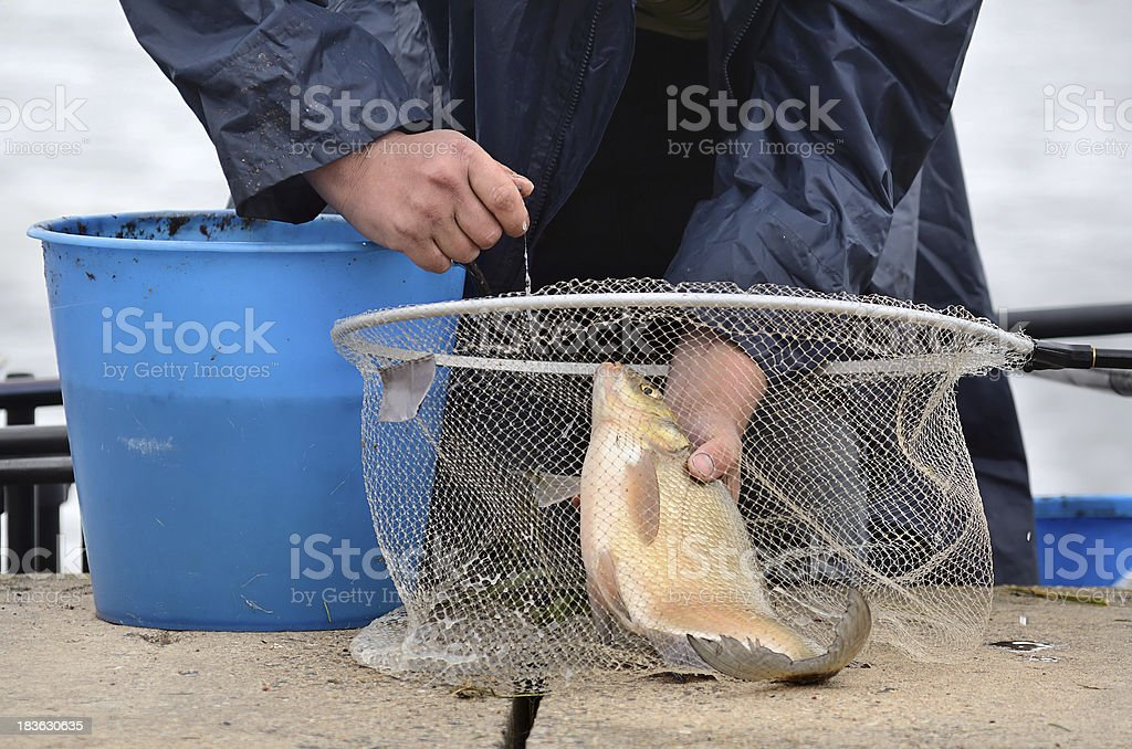 Fishing trophy royalty-free stock photo