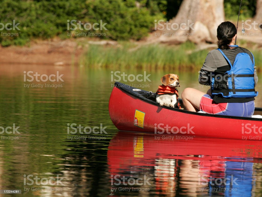 Fishing with dog royalty-free stock photo