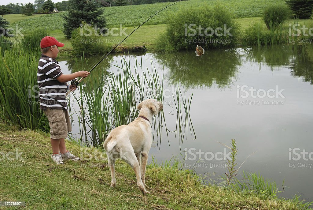 Fishing with my Dog stock photo