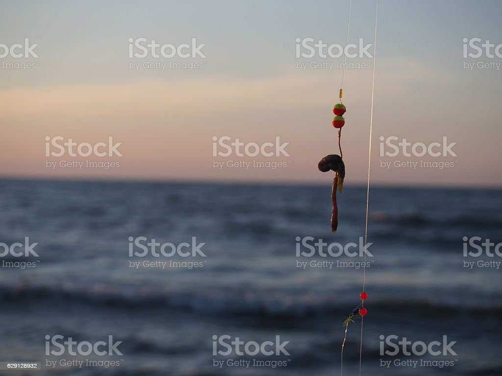 fishing-rod with bait stock photo