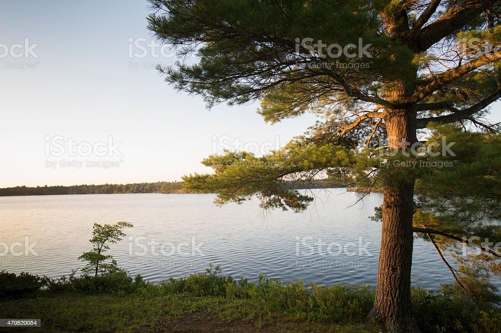 fishog lake sunset stock photo
