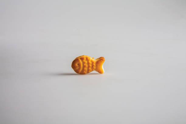 Balık biçiminde bisküvi stok fotoğrafı