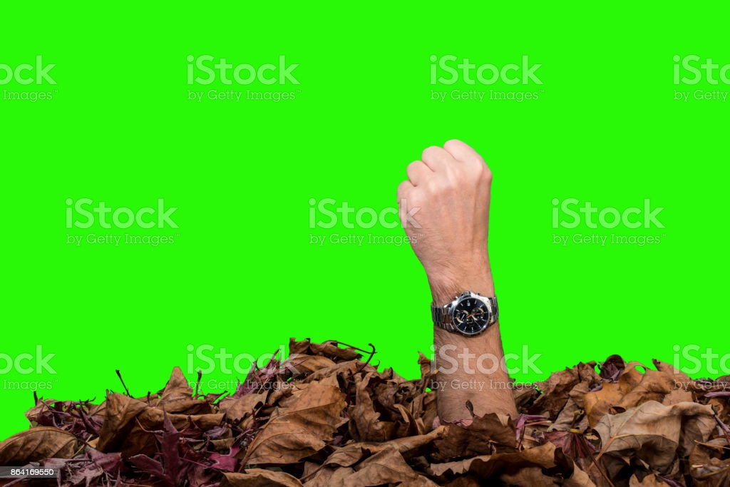 fist coming out of the ground royalty-free stock photo