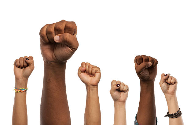 fists and arms raised in unison against white - fist stock photos and pictures