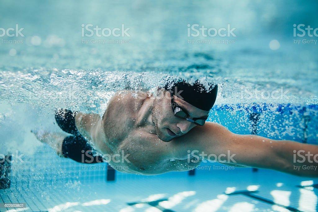 Fit swimmer training in the pool - Foto de stock de Adulto royalty-free