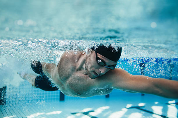 Fit swimmer training in the pool stock photo