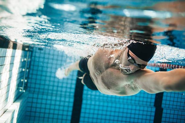 fit nadador en la piscina de entrenamiento - natación fotografías e imágenes de stock