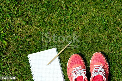 istock Fitness concept, pink sneakers and notebook with pencil outdoor 623111288