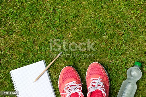 istock Fitness concept, pink sneakers, notebook and bottle of water outdoor 623111420