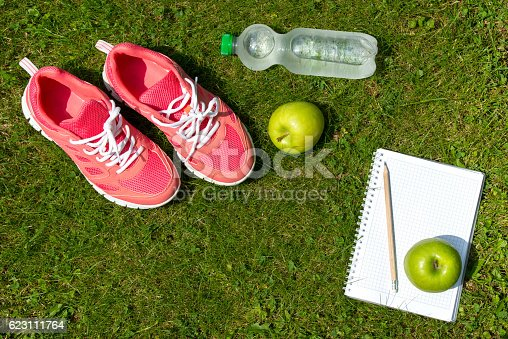 istock Fitness concept, pink sneakers, notebook, apples and bottle of water 623111764