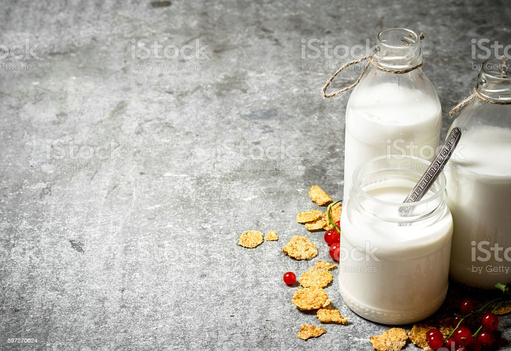 Fitness food. Milk with cereal and berries. royalty-free stock photo