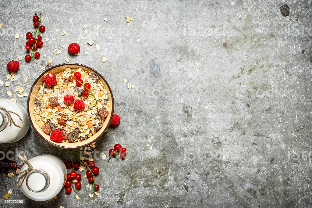 Fitness food. Muesli with berries and milk. royalty-free stock photo