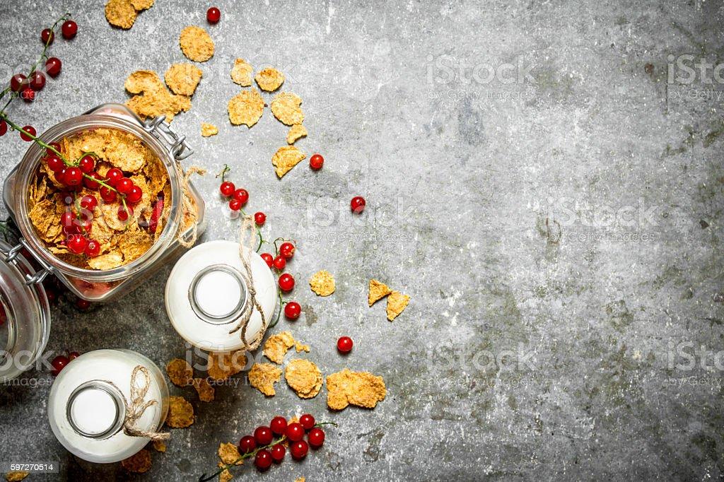 Fitness food. Muesli with berries and milk. Lizenzfreies stock-foto
