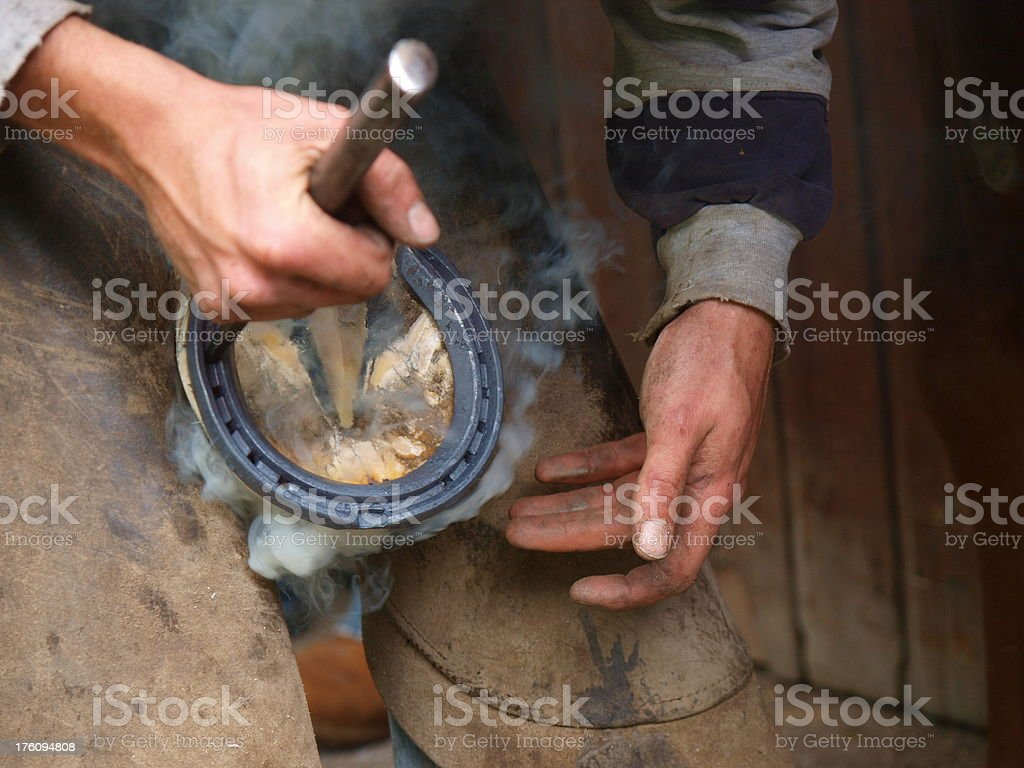 Fitting new shoes royalty-free stock photo