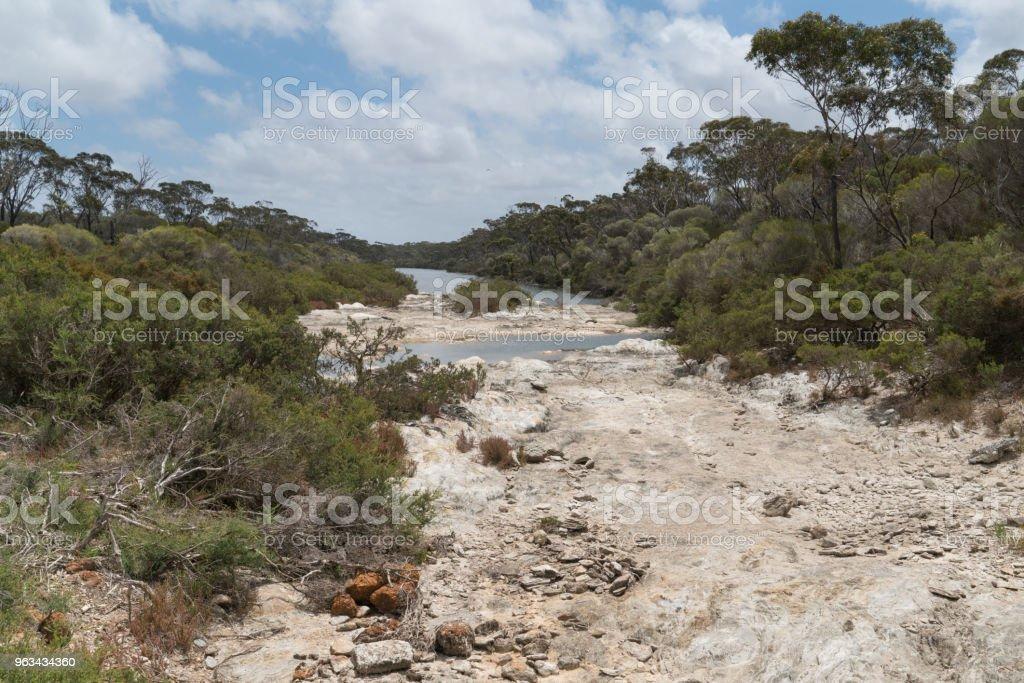 Fitzgerald River National Park, Australie-occidentale - Photo de Arbre libre de droits