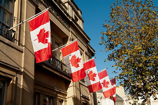 Five Canadian flags flying from building in sun next to tree stock photo