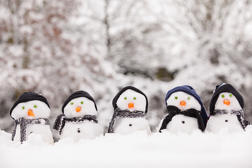 Five cute snowmen dressed for winter, all facing forward and sat on snow. Snowmen wearing hats and scarfs with carrot noses. Winter scene in the background with trees covered.