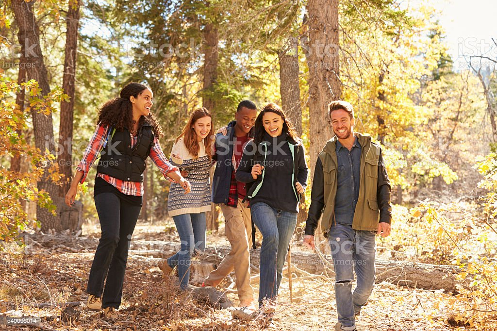 Five happy friends enjoy a hike in a forest, California, USA stock photo