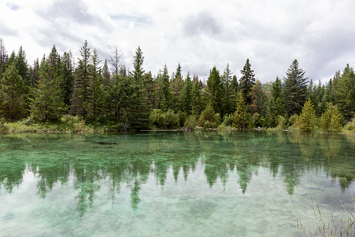 Five Lakes , Jasper National Park, Alberta, Canada. The lake is turquoise colored. It is a cloudy summer day.