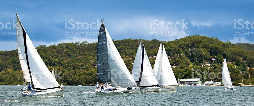 Five monohull sailing yachts racing on Brisbane Water. stock photo