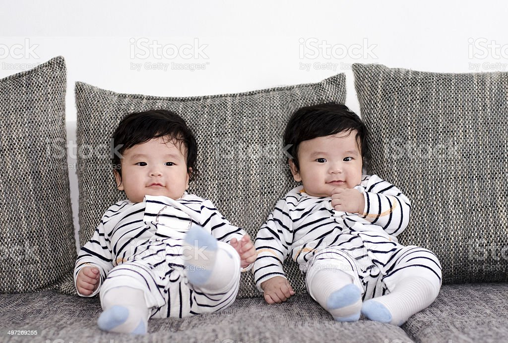 five months old  asian twins stock photo