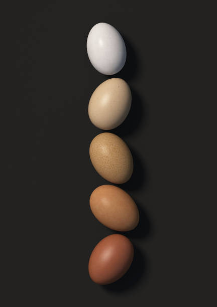 Five multi colored chicken eggs lie in a row on a black background. Top view. stock photo