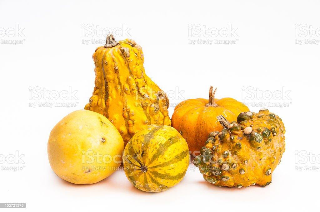 Five orange decorative pumpkins on isolating background stock photo