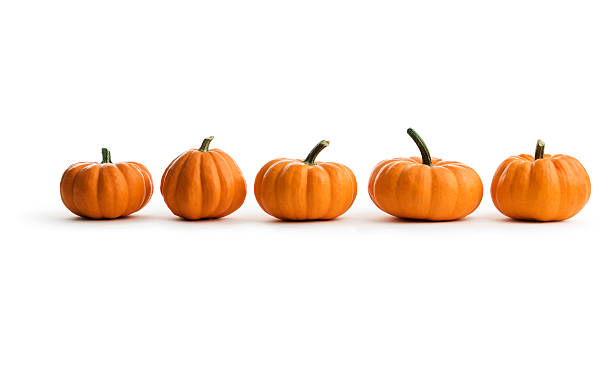 Five Orange Pumpkin Squash in a Row, an Autumn Food A row of five pumpkins, an autumn squash food, isolated on a white background. pumpkin stock pictures, royalty-free photos & images