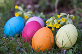 Five painted Easter eggs hidden in the grass