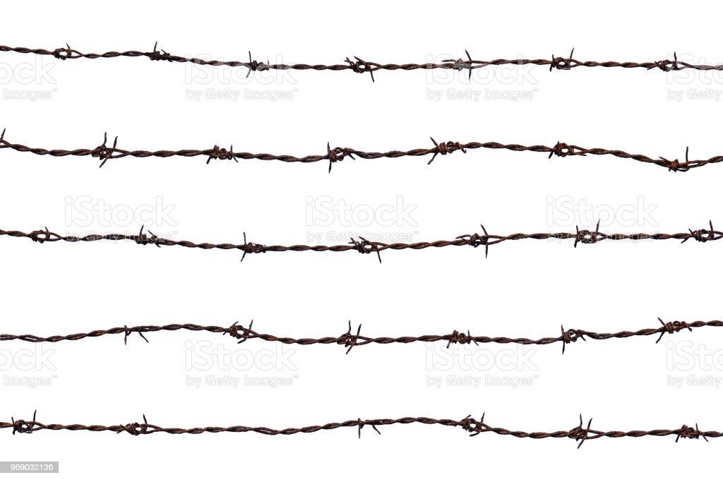 Five Rusty Barbd Wire Strands
