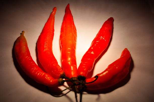 Five red hot chilli peppers on a background stock photo