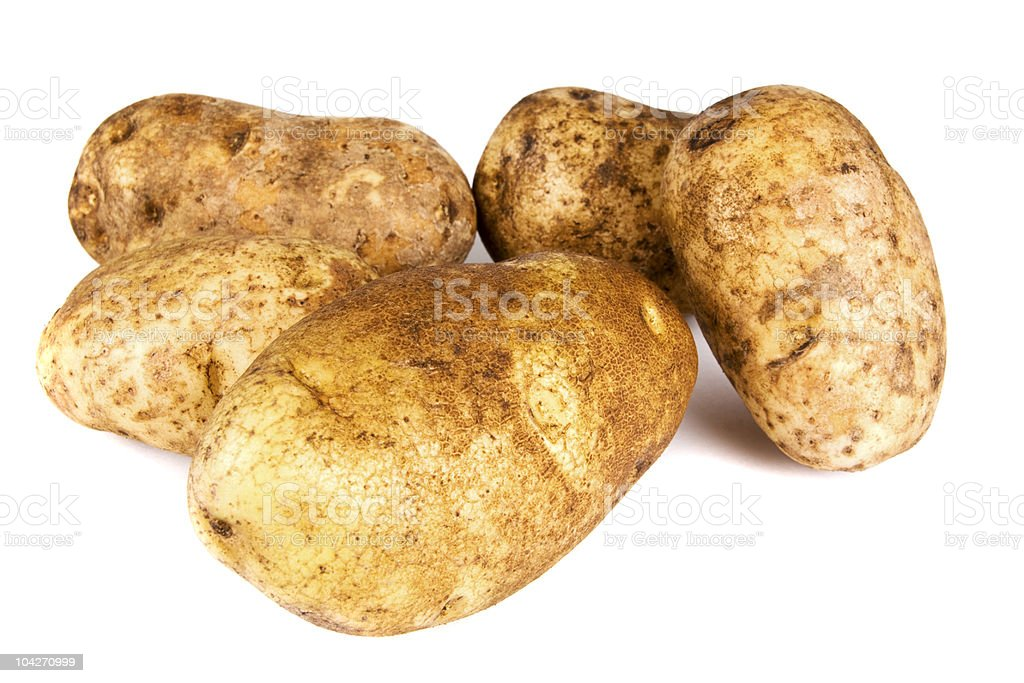 Five Russet Potatoes royalty-free stock photo