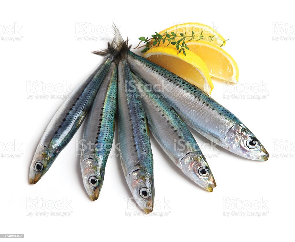 Five sardines with slices of lemons stock photo
