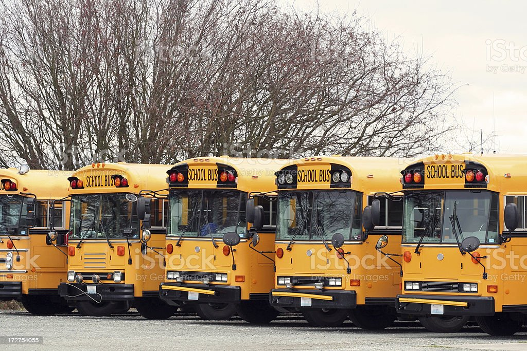 Five School Buses royalty-free stock photo