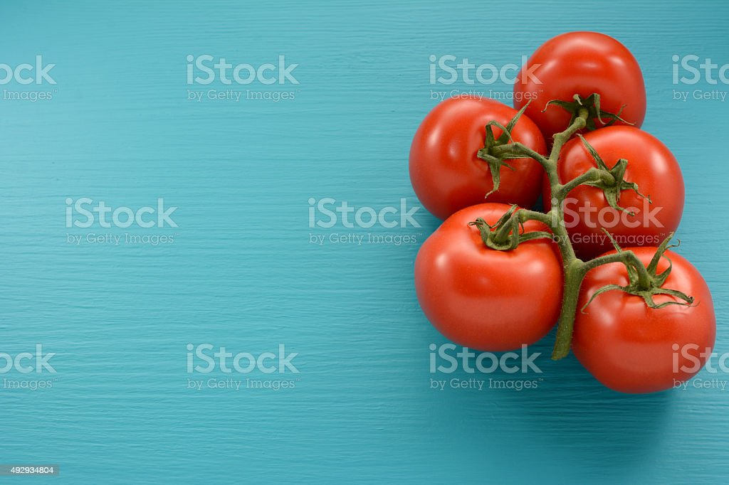 Five tomatoes on the vine on a blue background stock photo