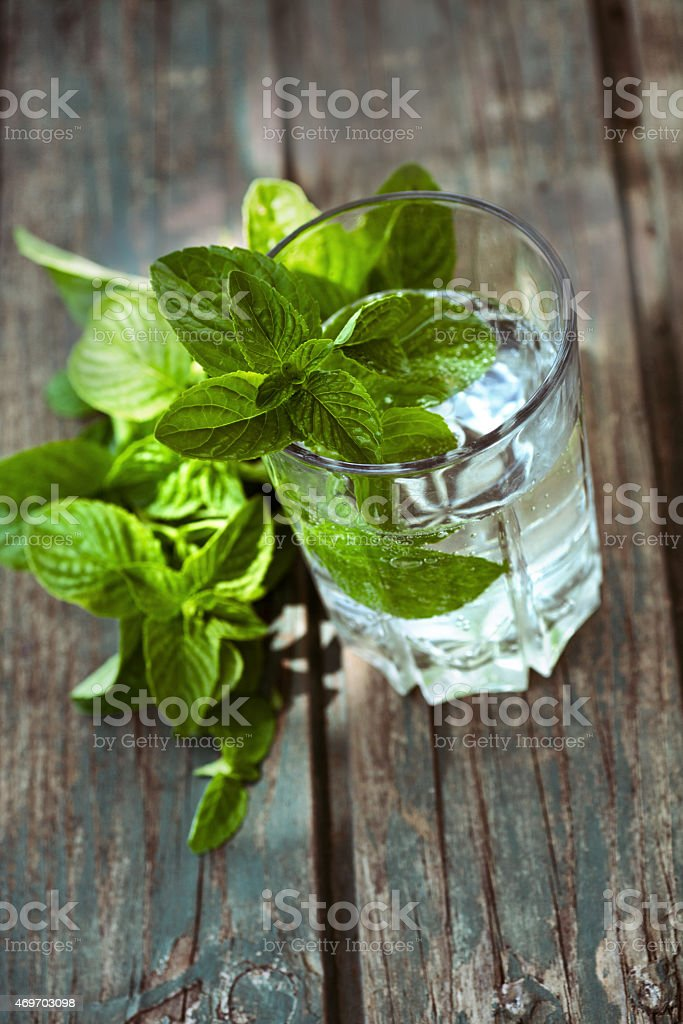Fizzy drink with mint stock photo