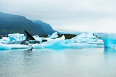 Blue icebergs in Fjallsarlon glacial lake in southern Iceland