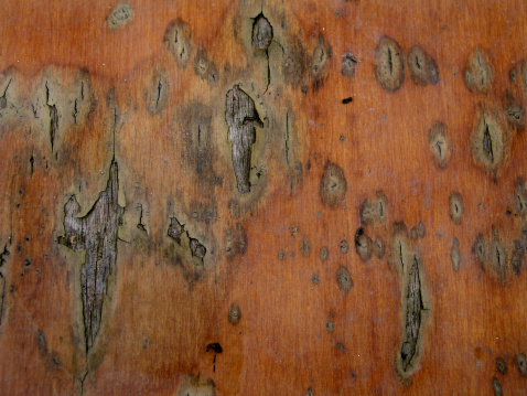 a wooden panel with flaked paint