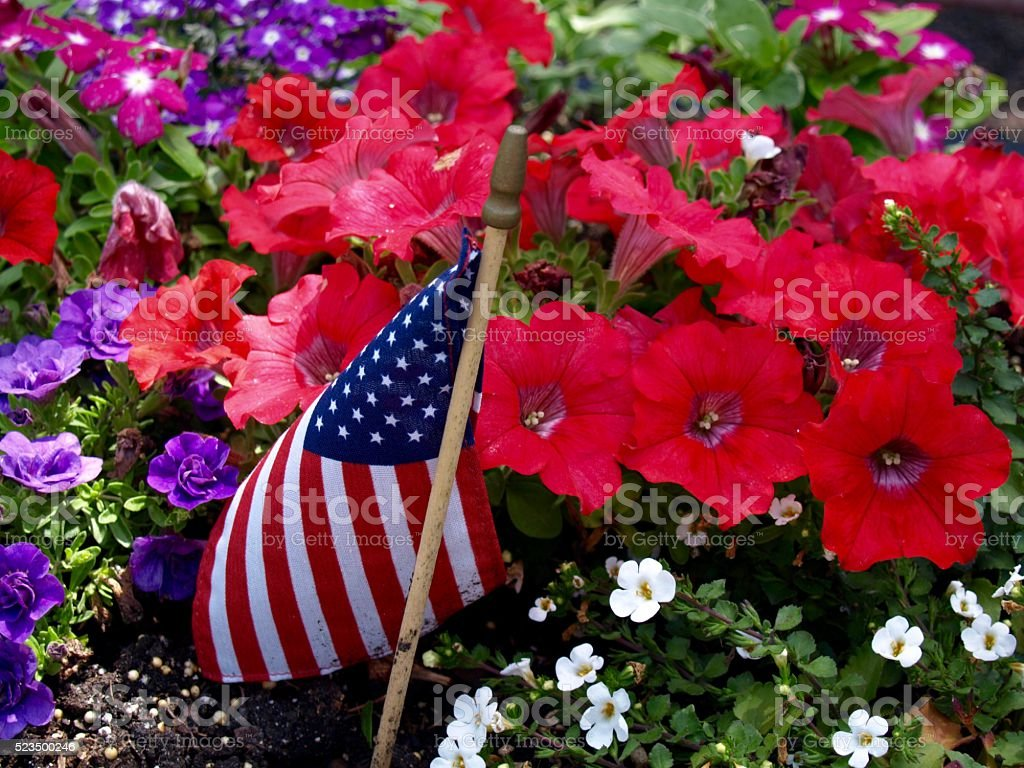 Flag and Flowers stock photo