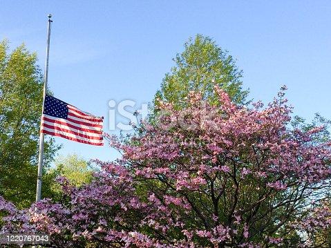 istock flag at half staff 1220767043