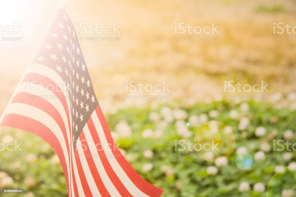 USA flag flies in afternoon sun in open meadow. stock photo