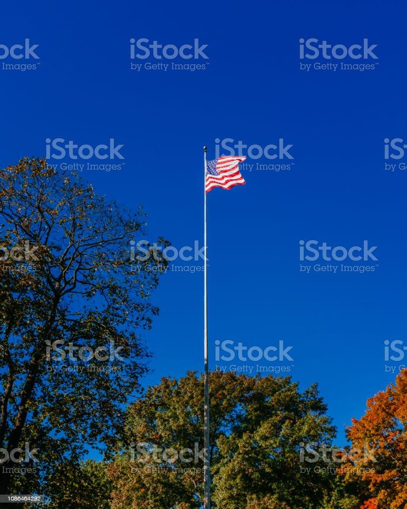 Bandeira dos EUA acima árvores contra o céu azul claro, no Central Park de Nova Iorque, EUA - foto de acervo