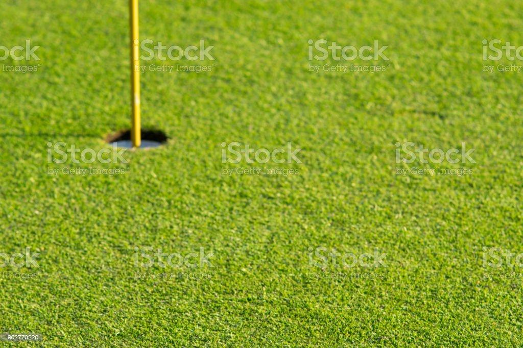 Green grass at a beautiful golf course