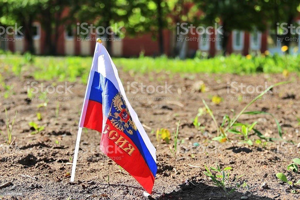 Bandeira em cores da Rússia com braços em fundo natural - foto de acervo