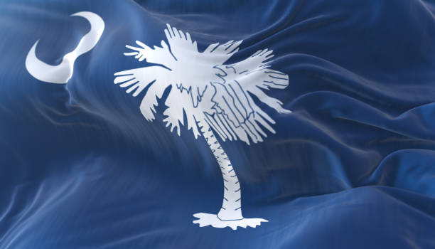Flag of american state of South Carolina, region of the United States Flag of american state of South Carolina, region of the United States, waving at wind spartanburg stock pictures, royalty-free photos & images
