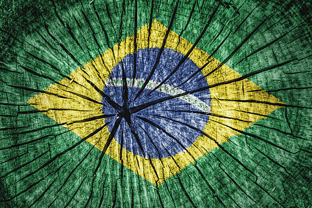 flag of  brazil - detachment stock pictures, royalty-free photos & images