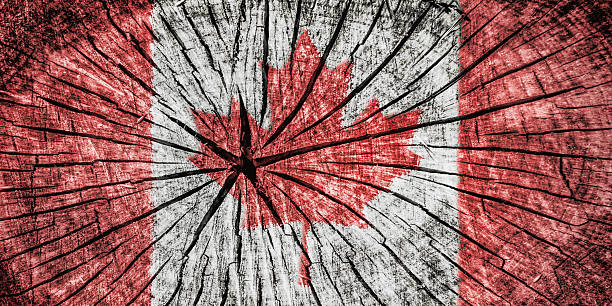 flag of canada - detachment stock pictures, royalty-free photos & images