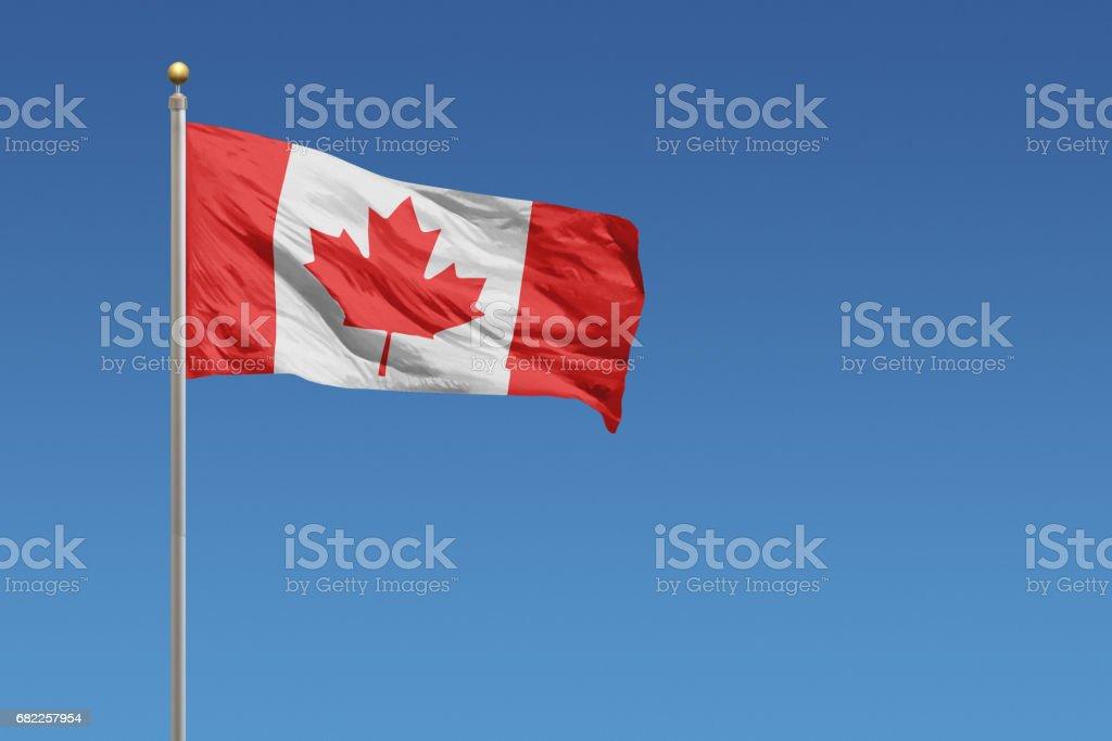 Bandeira do Canadá - foto de acervo